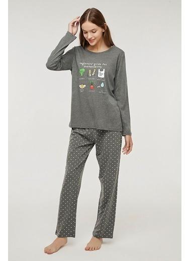 Penti Beginner Pijama Takımı Gri